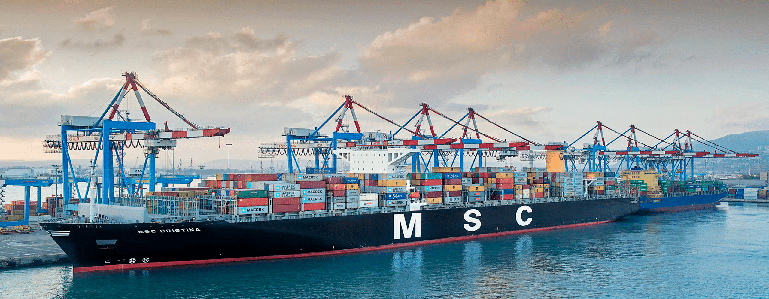 MSC Portugal starts to use SISQUAL Workforce Management solutions